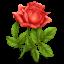 (c) Romanticgift-ideas.net